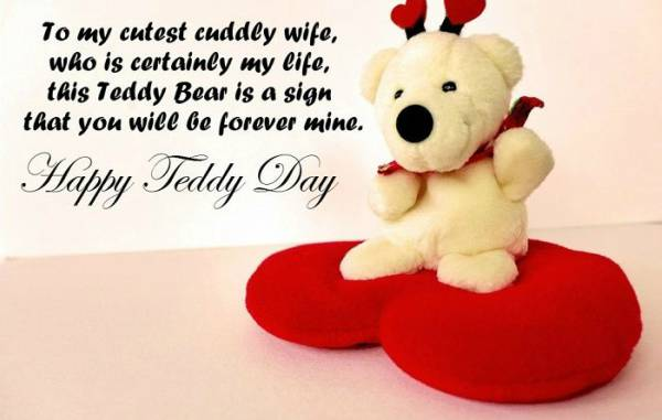 Teddy Status For Girl