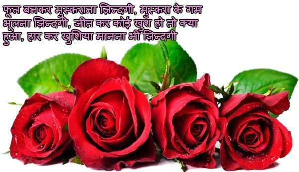 Rose Day Images With Love Quotes