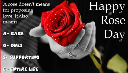 Rose Day Shayari and Quotes