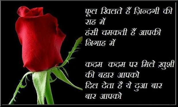Rose day image with shayri