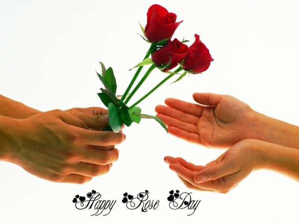 rose day image and msg