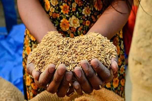खाद्य सुरक्षा योजना उत्तर प्रदेश नई सूची 2018
