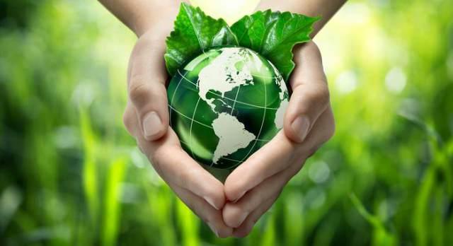 विश्व पर्यावरण दिवस नारे