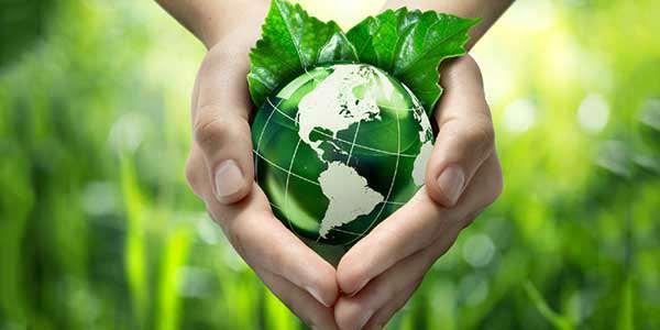 विश्व पर्यावरण दिवस पर भाषण