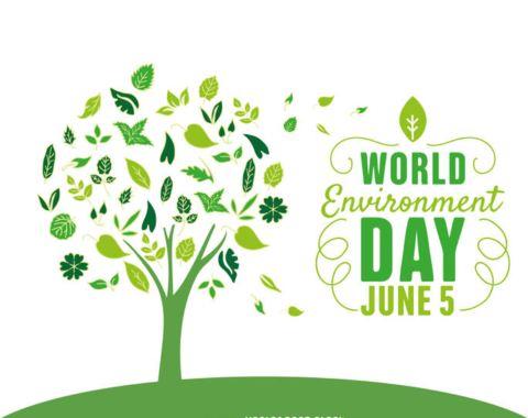 विश्व पर्यावरण दिवस पर शायरी