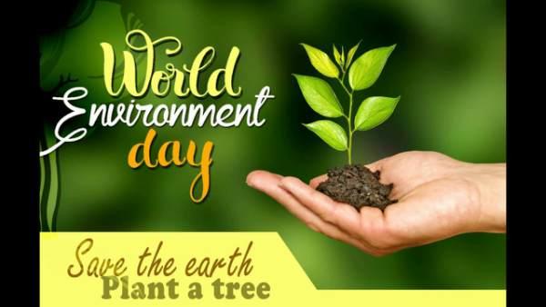 विश्व पर्यावरण दिवस स्लोगन