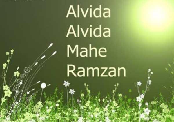 Alvida Ramzan Image 2018