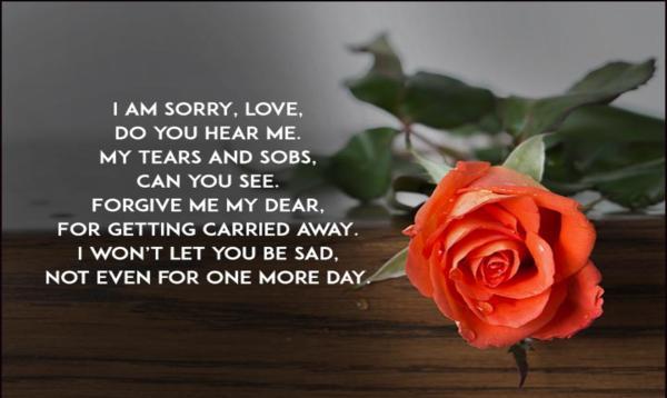 sorry love shayari in hindi for girlfriend 140 words sorry shayari