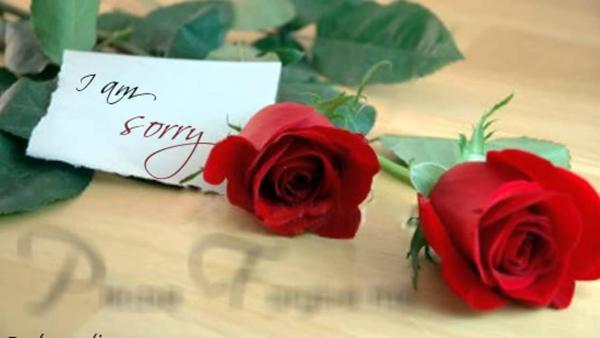 Sorry love shayari in hindi for girlfriend 140 words