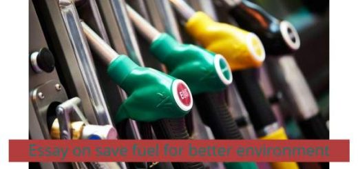Essay on save fuel for better environment