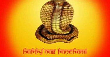 Nag Panchami Wishes in Hindi