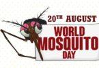World Mosquito Day Speech in Hindi