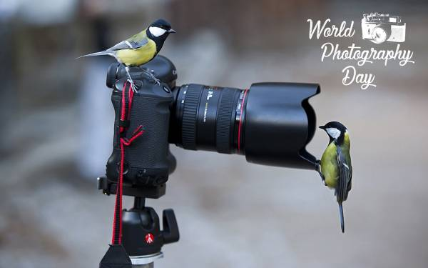world photography day poster