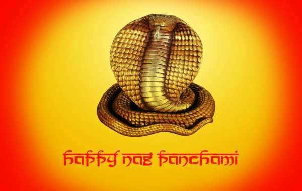 nag panchami hd photos