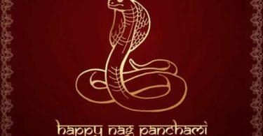 nag panchami ki shayari