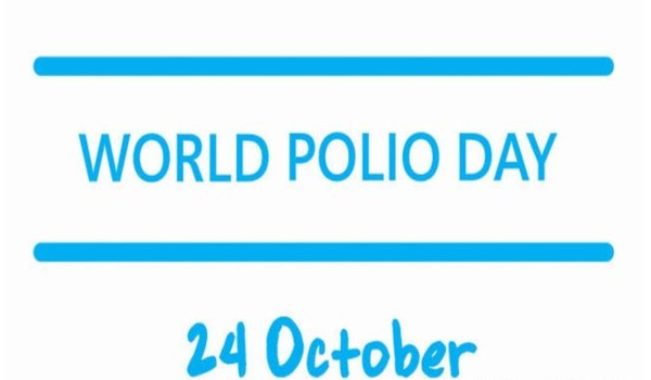 Essay on World Polio Day in Hindi Pdf download