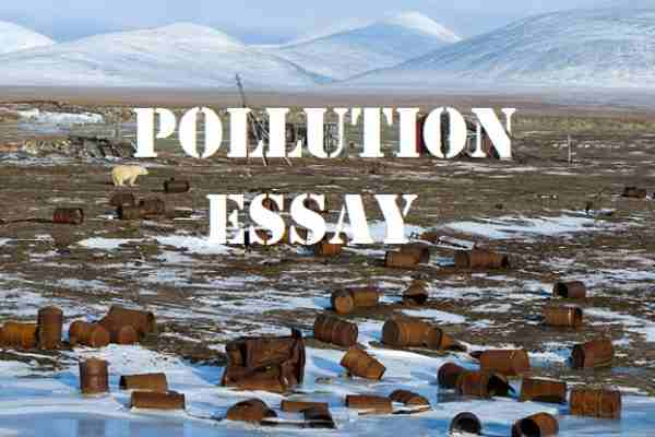 The environmental pollution essay