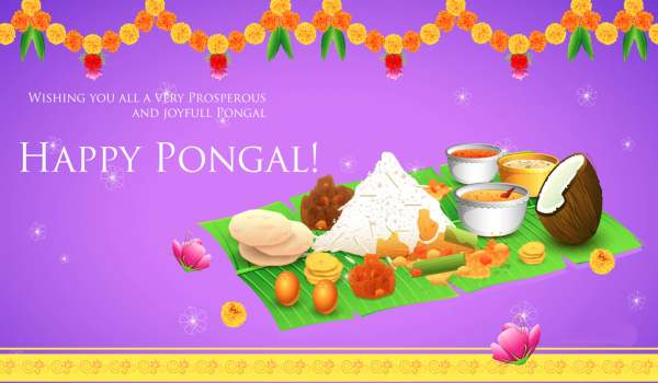 Advance happy pongal hd images