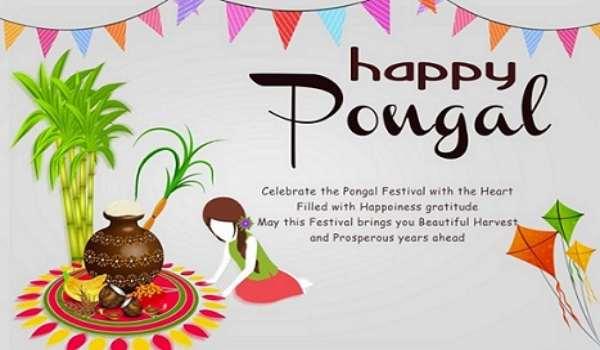Happy pongal pic