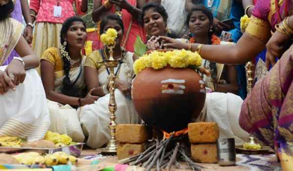 Pongal festival images1