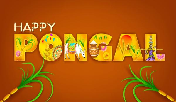 Pongal hd wallpaper