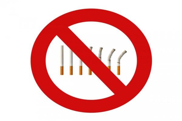 World No Smoking Day Essay