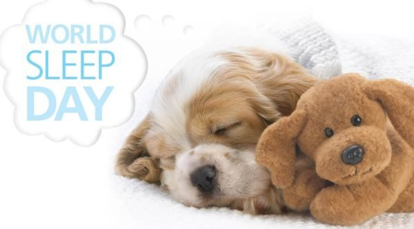 World Sleep Day HD Images