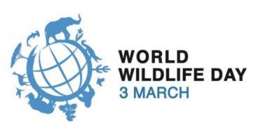 World Wildlife Day Speech in Hindi