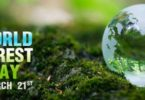World forestry Day Image