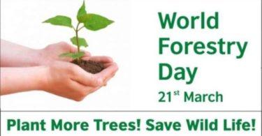 World forestry Day Speech