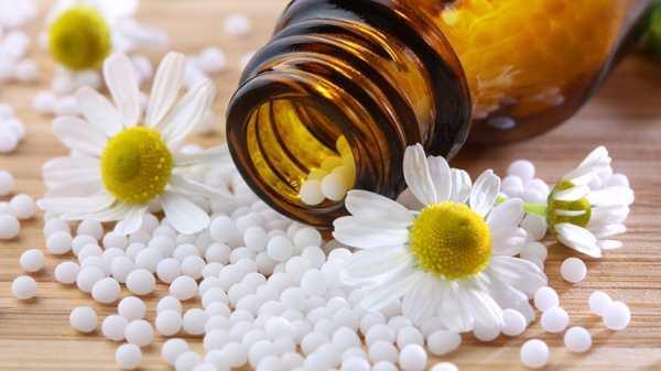 World homeopathy Day Essay in marathi