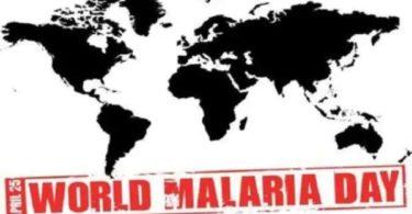essay on world Malaria day