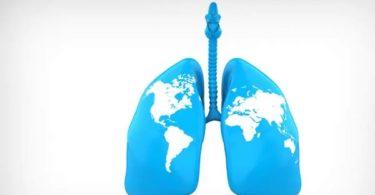 World Asthma Day status
