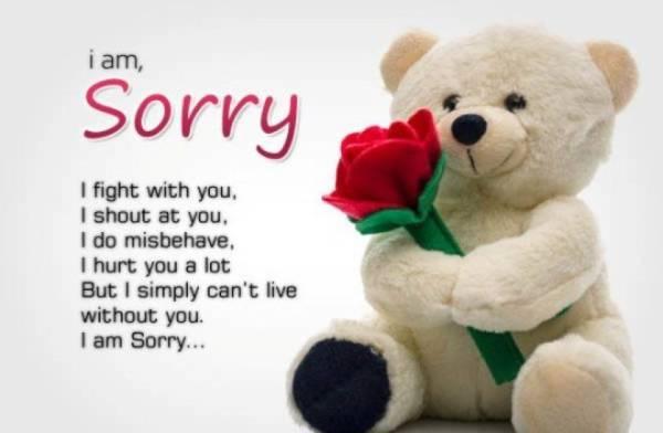 Sorry image girl