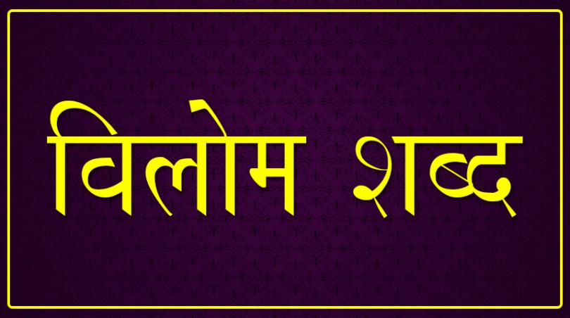 Important Hindi Vilom Shabd