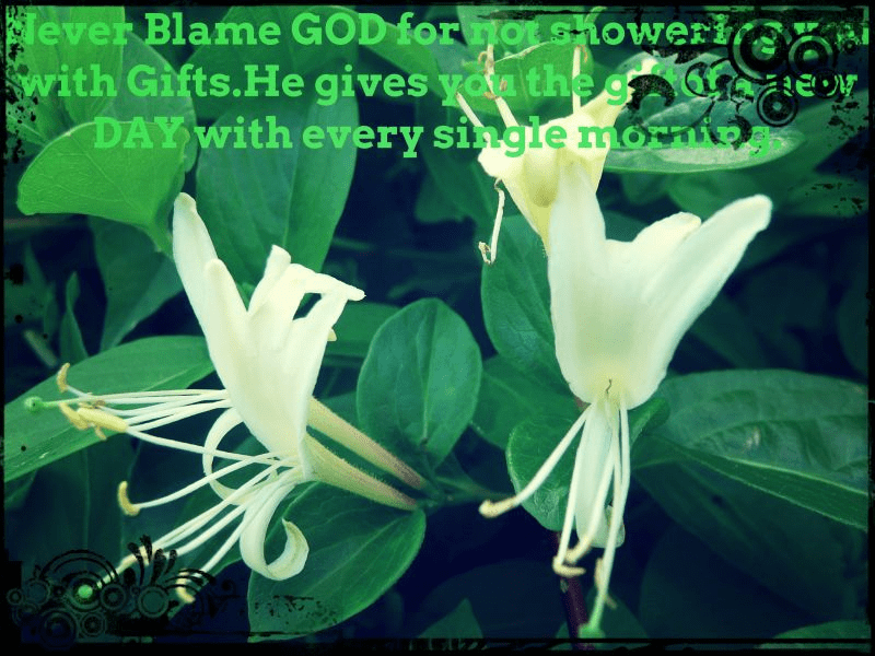 good- morning -never blame-quotes-