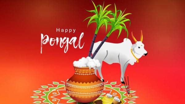 Pongal 2020 festival date