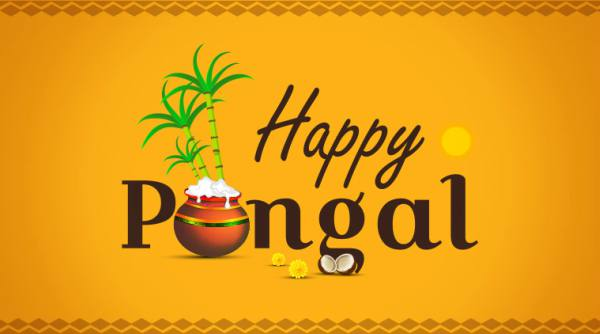 information about pongal in hindi