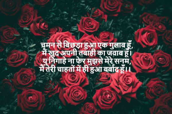 rose day wishes 2