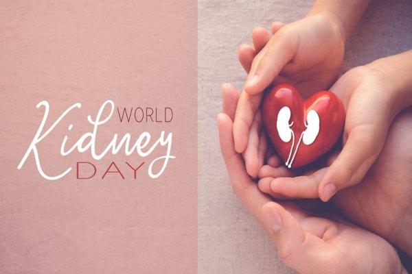 विश्व किडनी दिवस का मनाया जाता है ? उससे जुड़े तथ्य और थीम