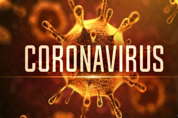 कोरोना_वायरस_2