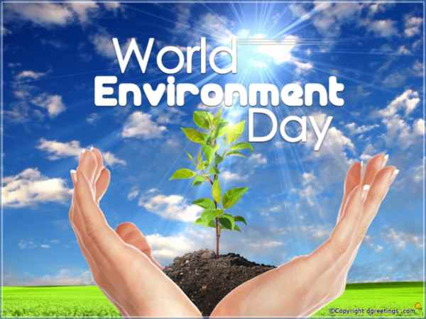 Few Lines about World Environment Day