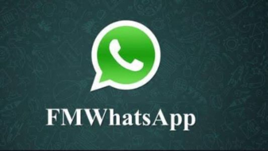 fm whatsapp download