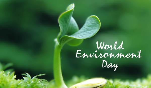 world environment day poster with slogan
